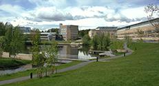 Umeå Uni